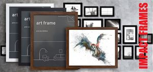 Huge Range of Frames!